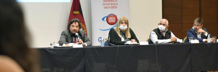 Sáenz instó a una participación activa del Consejo Económico y Social en las políticas públicas